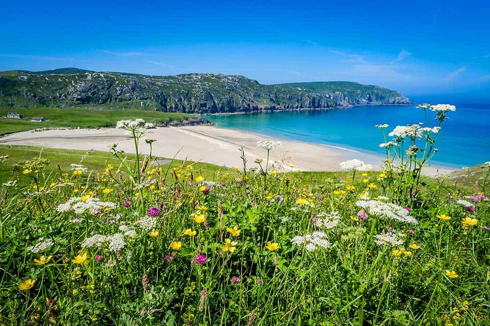 Undiscovered Hebrides sunshine beach and wildflowers
